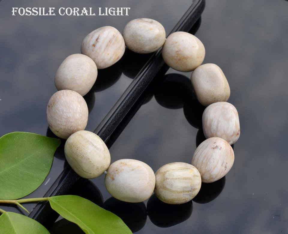 Fossile Coral Light Bracelet
